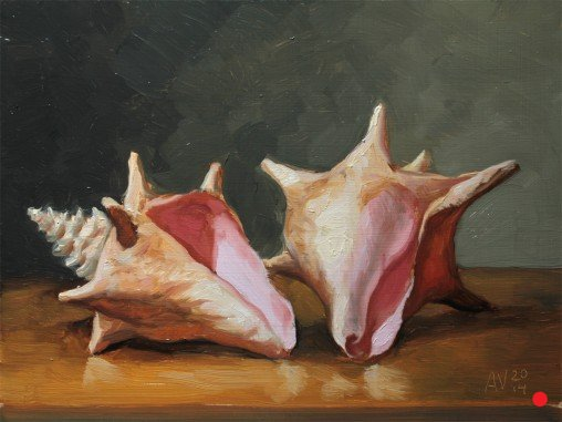 Conch